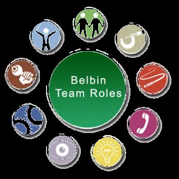 مدل بلبین در تیم سازی
